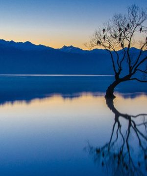 nikon-photography-tips-capturing-scenes-during-blue-hour--original